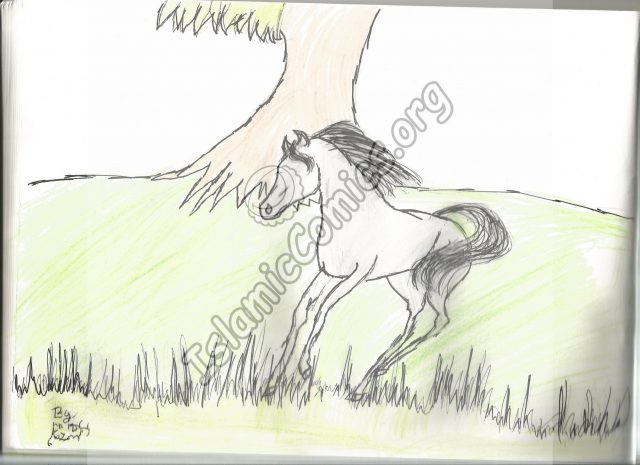 Horse Illustration by Wardah - Islamic Illustrations by Kids