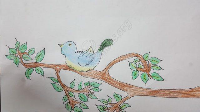 Birds in a Tree - Asma Saifuddin Shaikh (Illustrations by Muslim Kids)
